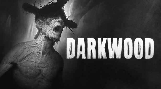 Preorders for the Darkwood Vinyl soundtrack up via Ship To Shore now